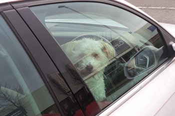 brownsville TX car lockouts
